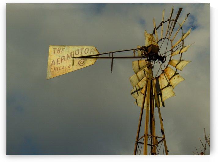 Aeromotor Windmill by Christy Garavetto