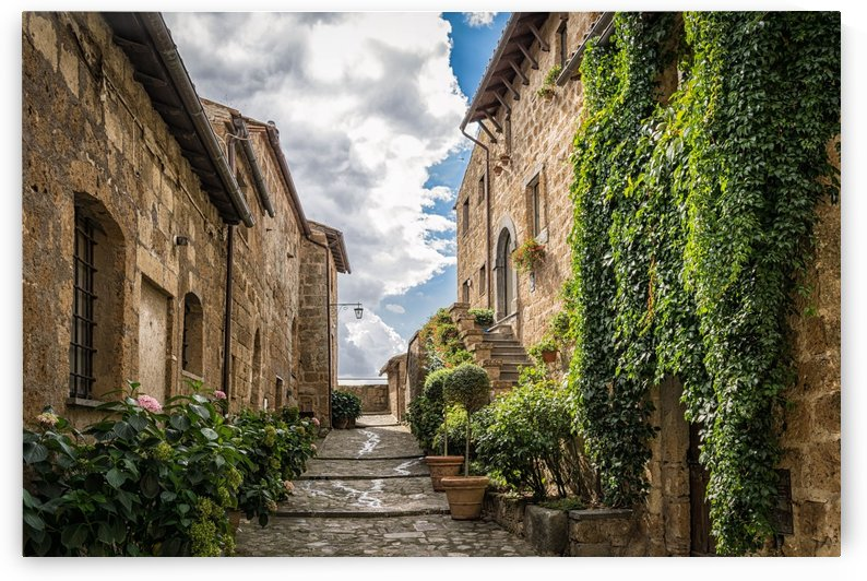 alley, road, middle ages, ivy, mediterranean, patch, stones, gradually, rest, architecture, past, stone house, italy, romantic, by fabartdesigns