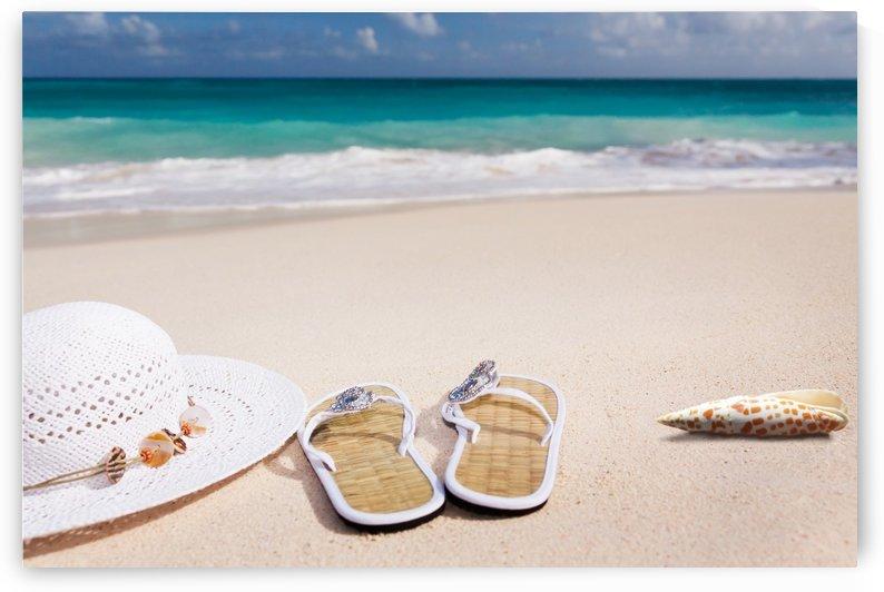 beach, sand, sea, sand beach, vacations, caribbean, coast, summer, coneflower, flip flop, shell, by fabartdesigns