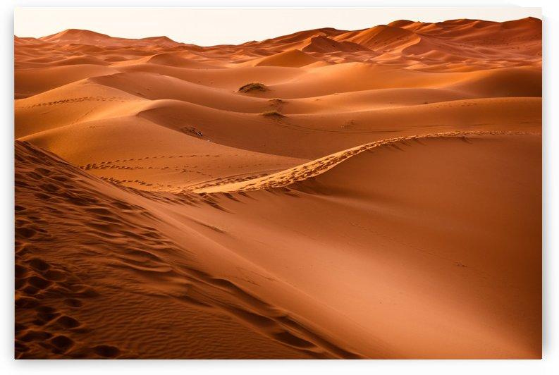 desert, morocco, sand dune, dry, landscape, dunes, sahara, gobi desert, by fabartdesigns
