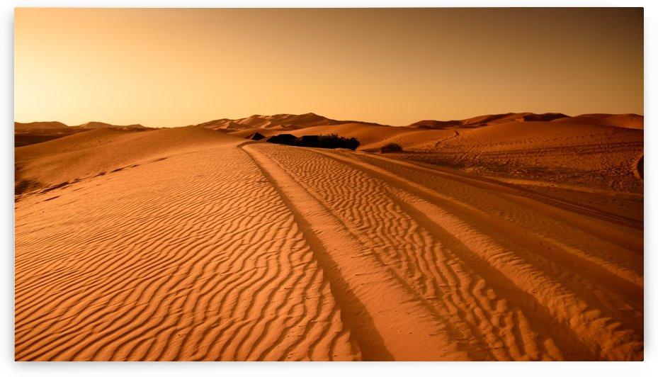 desert, morocco, sand dune, dry, sahara, drought, gobi desert, traces, dunes, by fabartdesigns