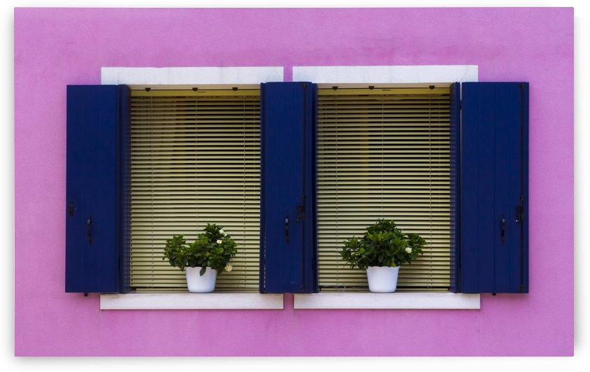 Windows in Burano by Pietro Ebner