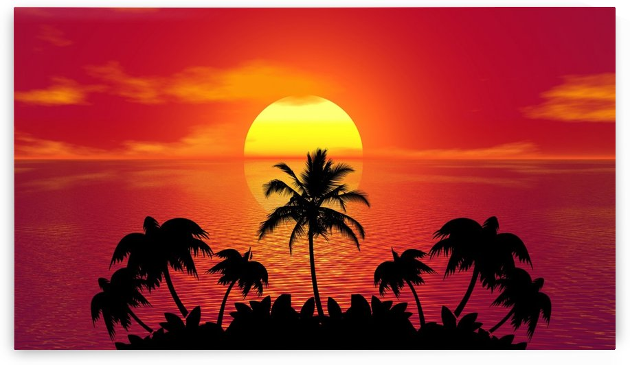 tropical sunset summer sun palm tree hot climate night by fabartdesigns