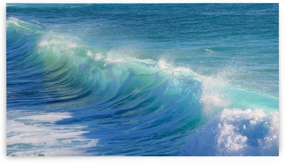surf, water, wave, sea, nature, turquoise, ocean, splash, seashore, panoramic, spray, foam, by fabartdesigns