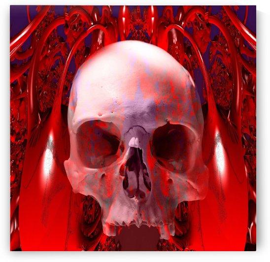 Skull Transfusion by Matthew Lacey