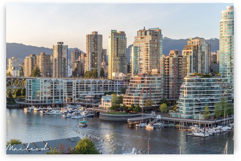 Vancouver_June_IMG_3554 by Brian Macleod