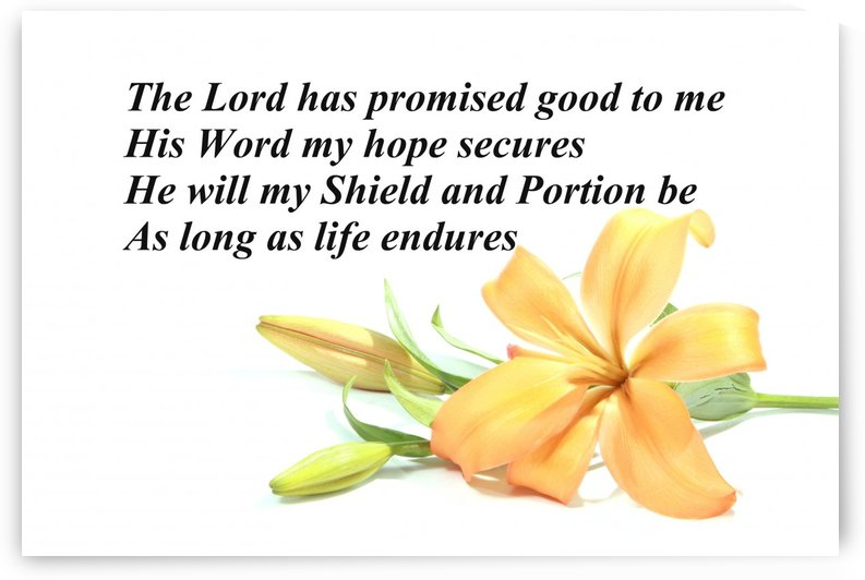 The Lord has promised good to me by Edifying Designs