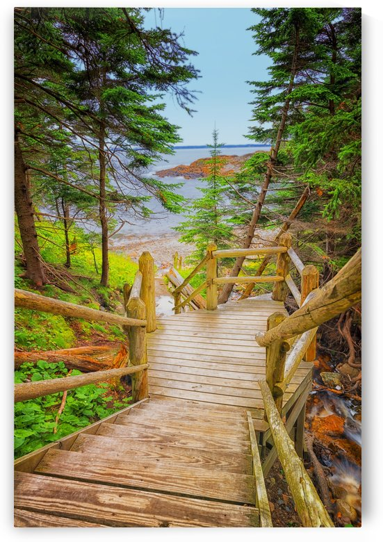 Stairs to Beach in Acadia by Ben Tolosa