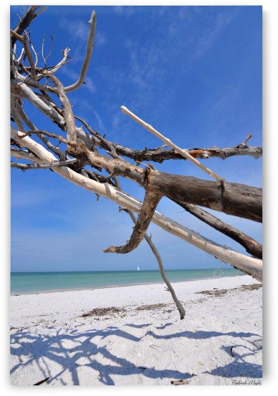 Beach Bum by Frederick Missel