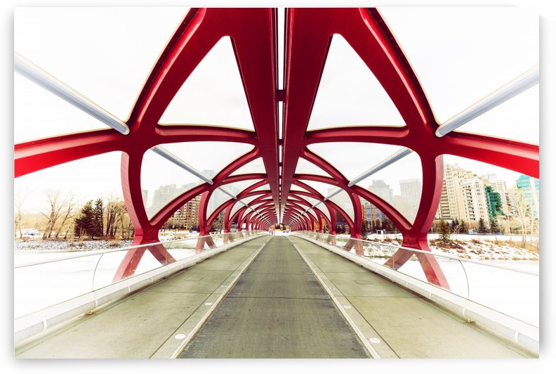 Peace Bridge by Alex Galiano
