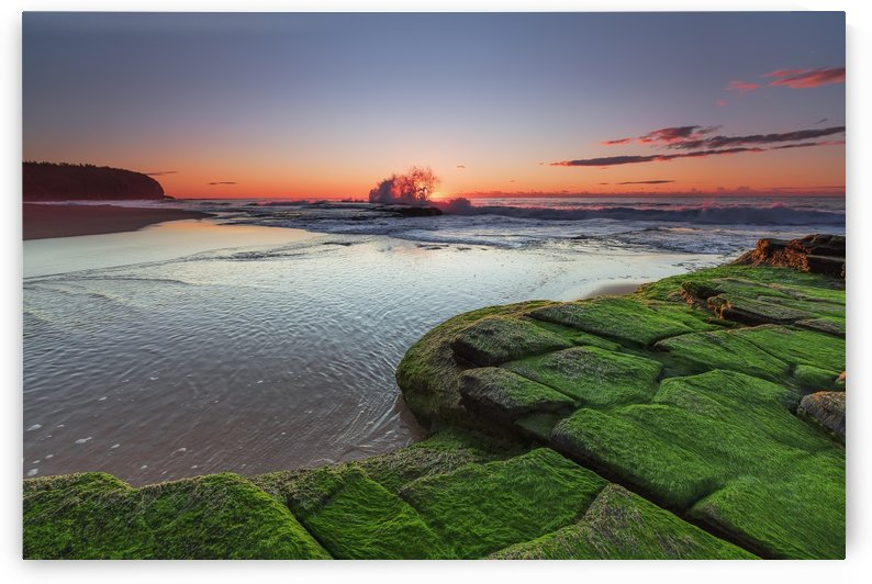 Turimetta Beach at Sunrise by Alex Galiano