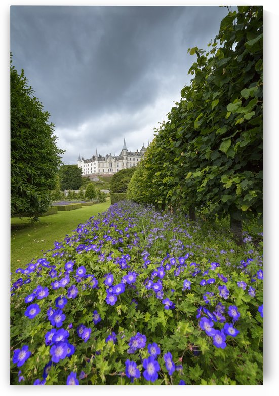 Dunrobin Castle by Alex Galiano