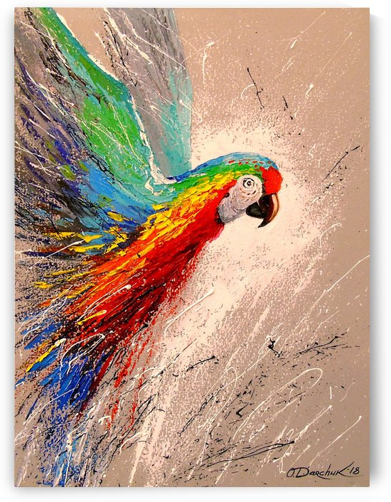 Parrot in flight by Olha Darchuk