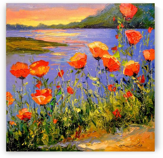 Poppies by the river by Olha Darchuk