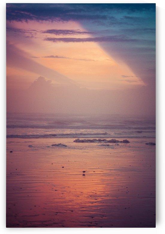 Golden Sunrise by Danielle Farrell