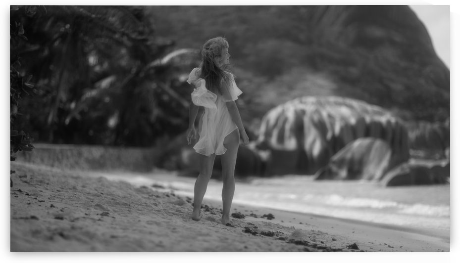 Seychelles by Dmiry Laudin