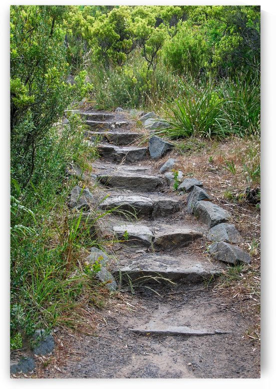 Stone steps at Cape Otway Victoria by Fran Woods