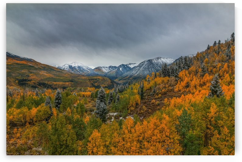 AUTUMN WONDERLAND by Bill Sherrell