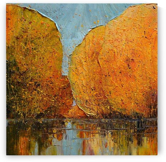 River by Justyna Kopania
