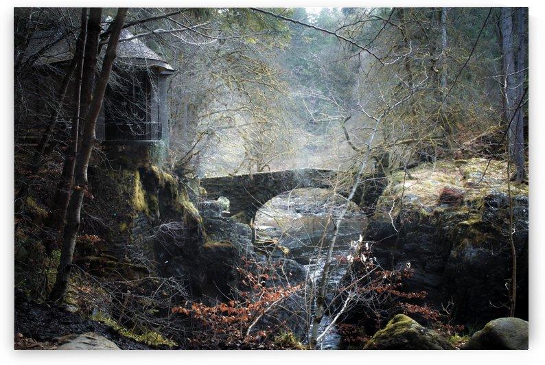The Hermitage by Kristy Ashton