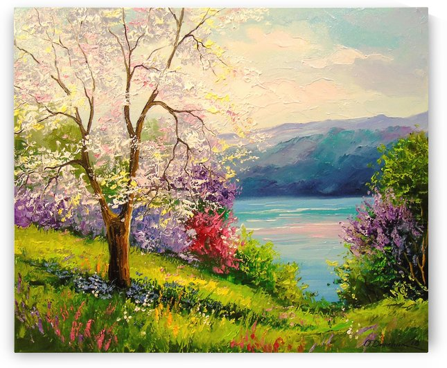 Cherry blossoms by the river by Olha Darchuk