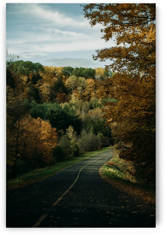 Route dautomne by StephanieAllard