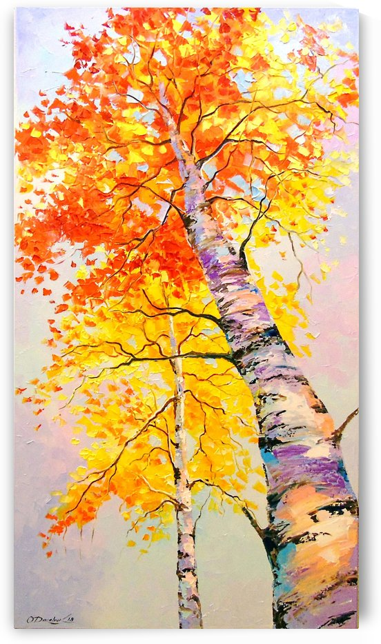 Heavenly birches by Olha Darchuk