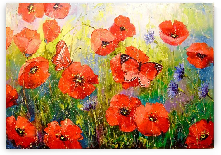 Poppies and butterflies by Olha Darchuk