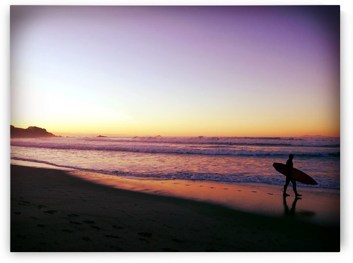 Surfer in the Sunset by Suzanne Morgan