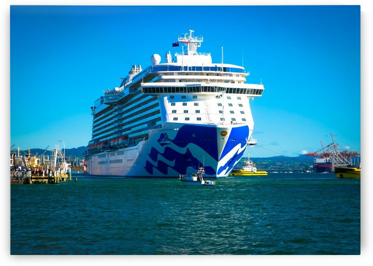 Majestic Princess by Suzanne Morgan