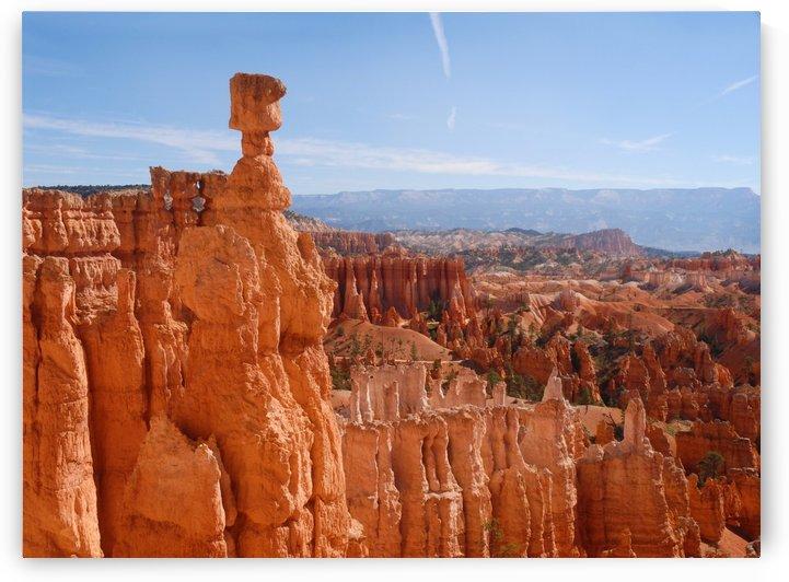 Bryce Canyon Hoodoo by Senthia Sanders