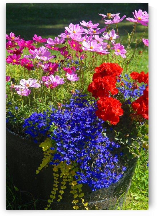 Alaskan Bouquet by Senthia Sanders