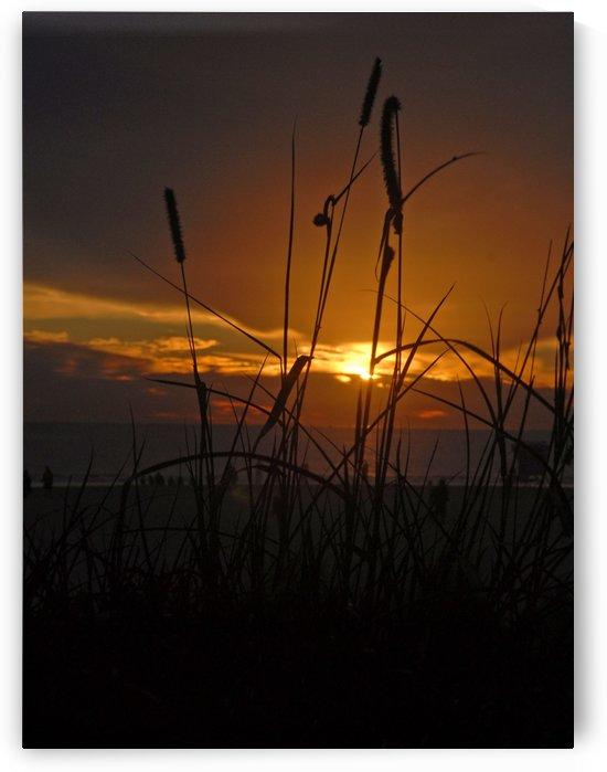 Sundown by Senthia Sanders