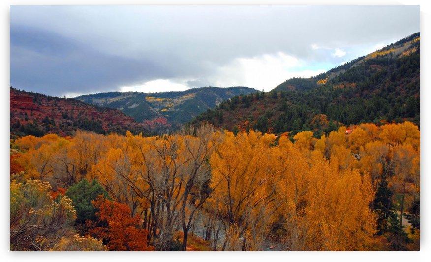 Fall in Colorado by Senthia Sanders