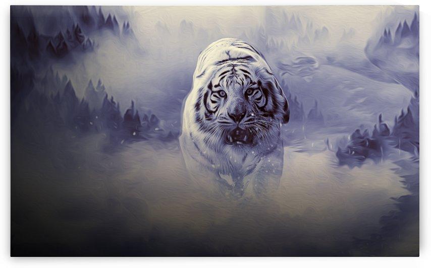 white tiger by khaled Aljaber