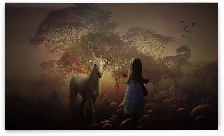 bonjour horse by khaled Aljaber