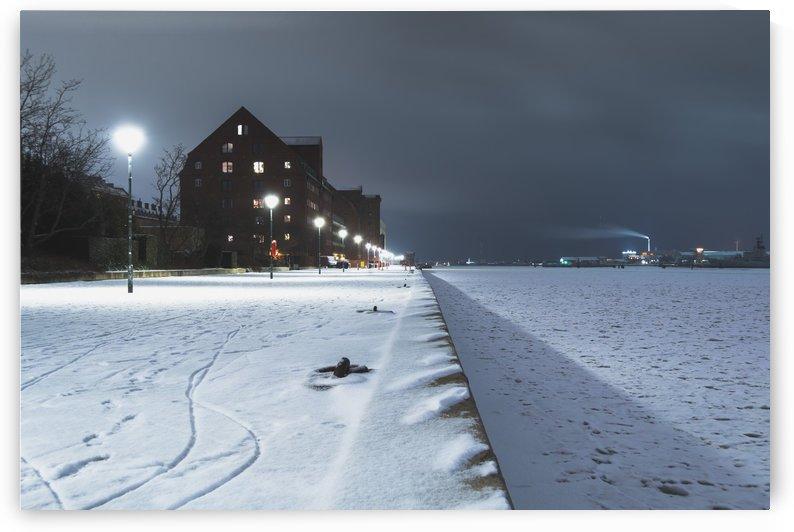 Forzen canal in Copenhagen by Dalius Baranauskas