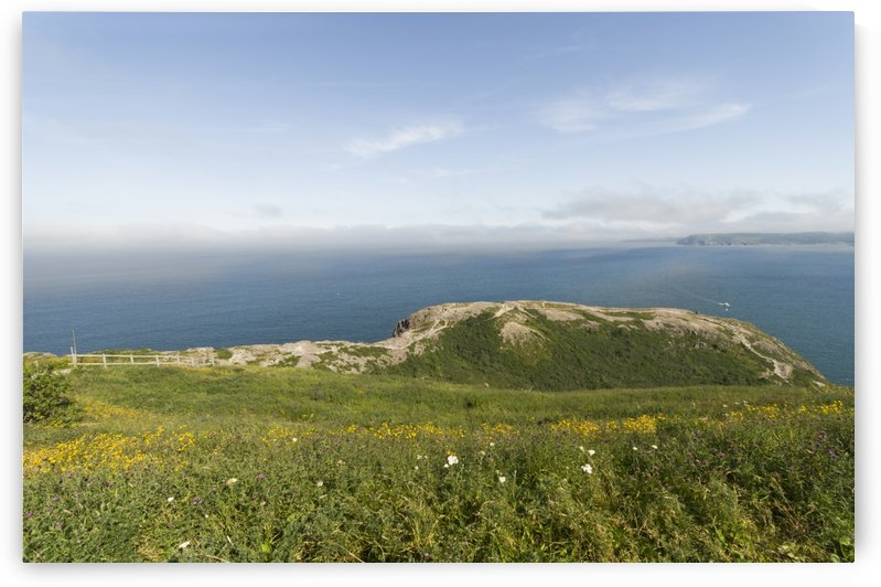 Vistas Along the walking trails of Signal Hill 1 by Bob Corson