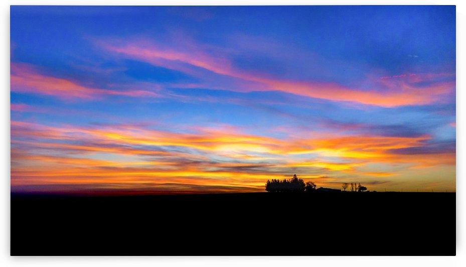 Uruguayan Field Sunset Scene Landscape by Daniel Ferreia Leites Ciccarino