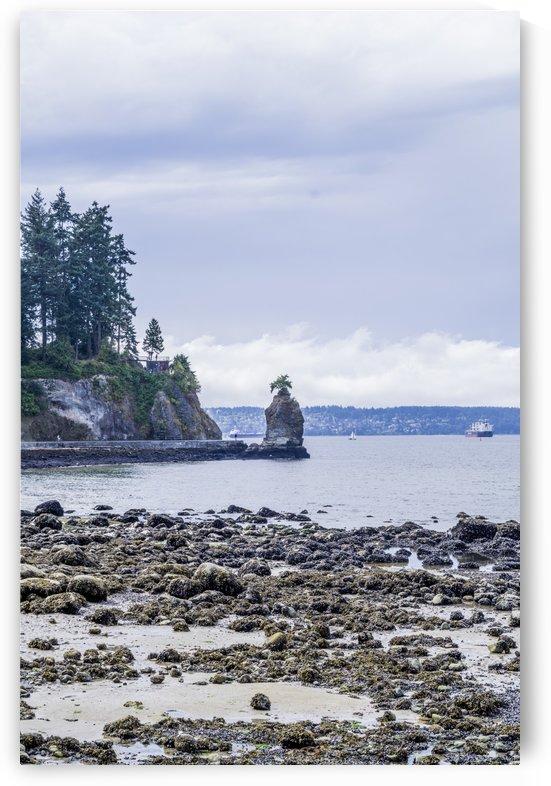 Siwash Rock 2 by Bob Corson