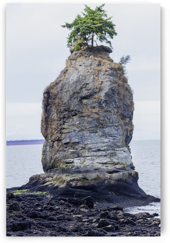 Siwash Rock 5 by Bob Corson