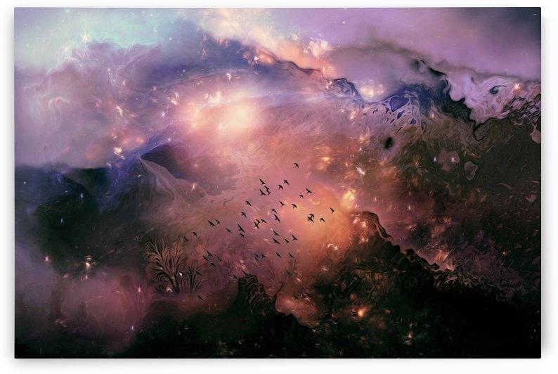 Background nature  by khaled Aljaber