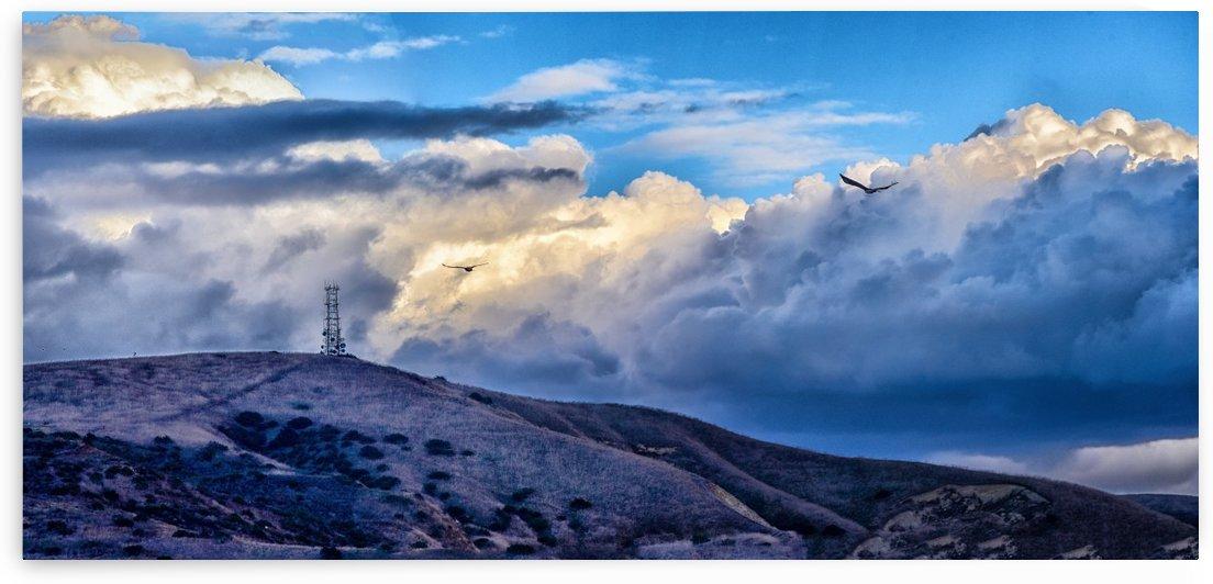 Blue Dawn Panorama 1 by Linda Brody