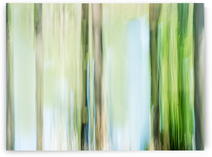 Moving Trees 14 Landscape 52 70 200px by Gene Norris