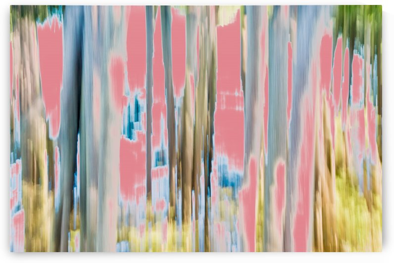 Moving Trees 23 Landscape 52 70 200px by Gene Norris