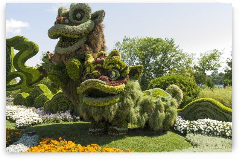 From Shanghai: Joyful Celebration of the Nine Lions 11 by Bob Corson