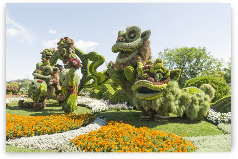 From Shanghai: Joyful Celebration of the Nine Lions 10 by Bob Corson