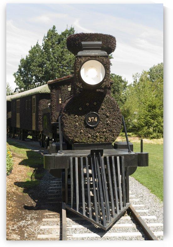 CPR Steam Engine 374 by Bob Corson