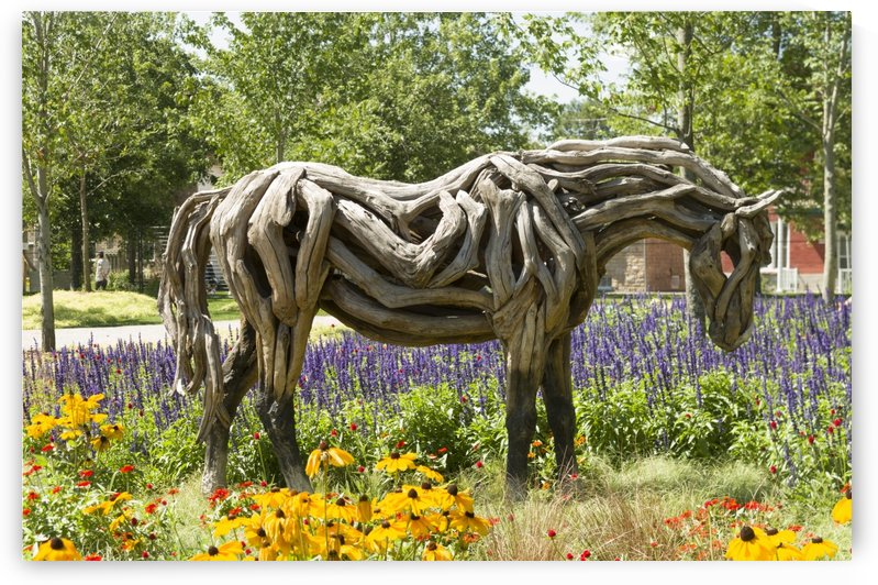Odyssey the horse sculpture made of driftwood by Heather Jansch 2 by Bob Corson