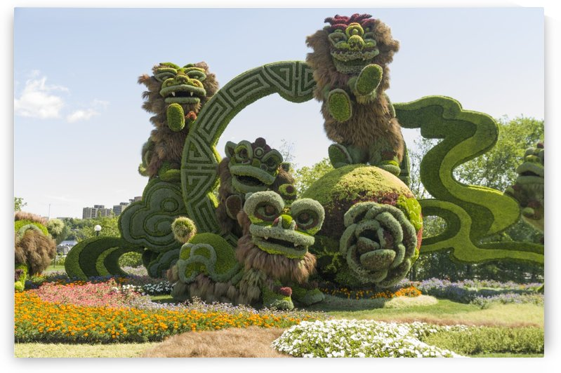 From Shanghai: Joyful Celebration of the Nine Lions 1 by Bob Corson